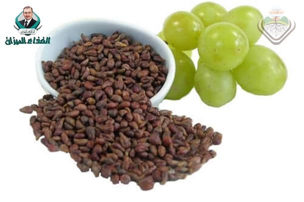 Grape seed and tea extracts and catechin 3-gallates are potent inhibitors of α-amylase and α-glucosidase activity.